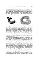 Сторінка 27