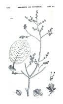 Сторінка 1572