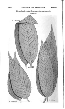 Сторінка 1610