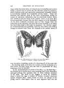 Сторінка 258