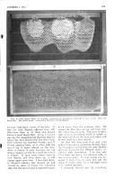 Сторінка 853