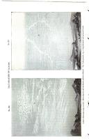 Сторінка 442