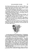 Сторінка 85