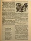 Сторінка 233