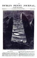 Сторінка 305