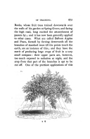 Сторінка 275