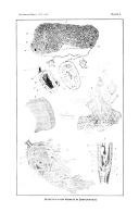 Сторінка 497