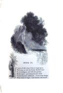 Сторінка 247
