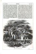 Сторінка 535