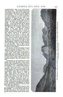 Сторінка 441