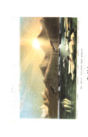 Сторінка 186