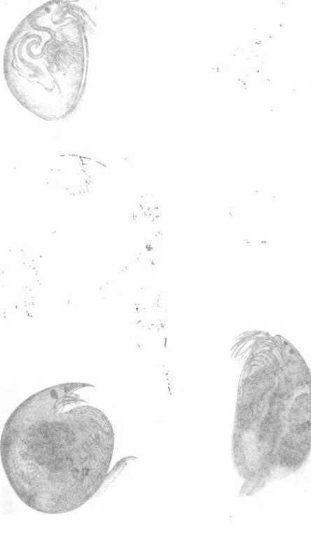 [graphic][graphic][merged small][graphic][graphic]