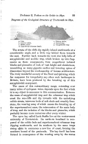 Сторінка 95