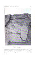 Сторінка 346