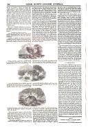 Сторінка 184