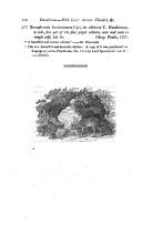 Сторінка 114