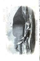 Сторінка 226