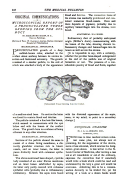 Сторінка 448