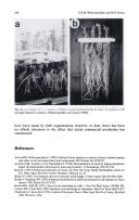 Сторінка 438