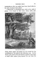 Сторінка 31