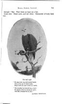 Сторінка 831