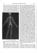 Сторінка 86