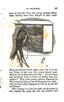 Сторінка 43