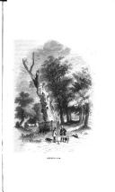 Сторінка 42