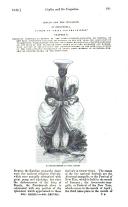 Сторінка 681