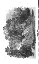 Сторінка 52