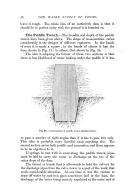 Сторінка 56