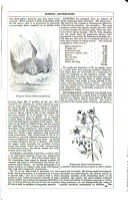 Сторінка 125