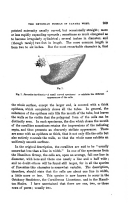 Сторінка 259